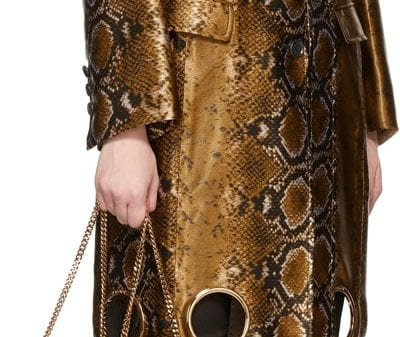 Like a Million Dollars: Versace Gold Python Cut-Out Coat Like a Million Dollars: Versace Gold Python Cut-Out Coat Vanity Teen Menswear & new faces magazine